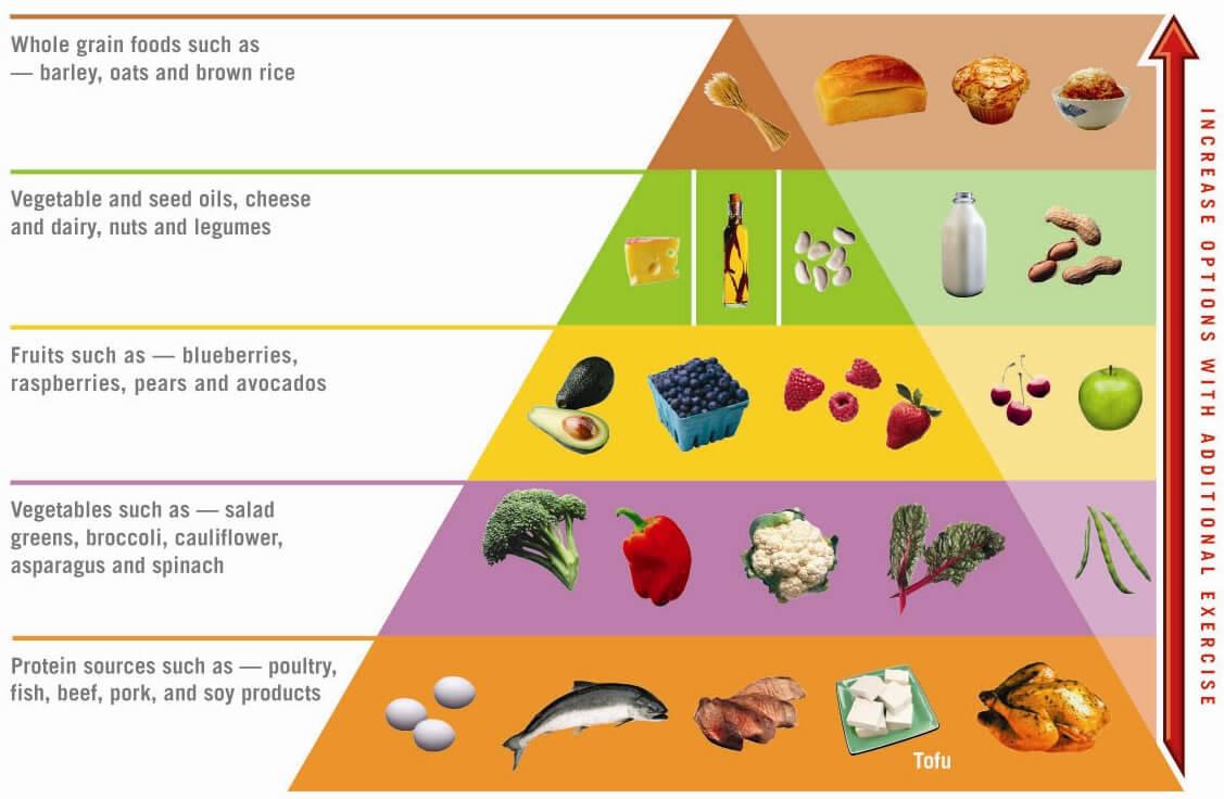 [B]Diet Pembakaran Lemak [Berat badan turun 6kg dalam seminggu][/B]