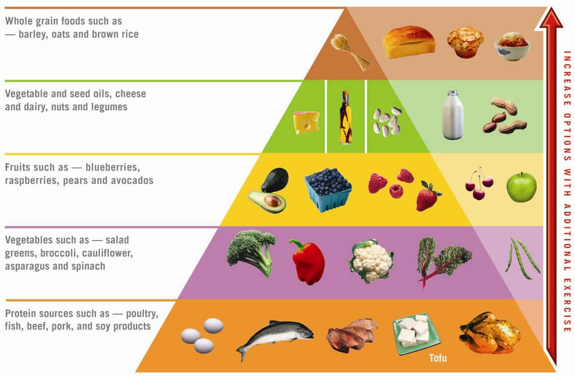 Atkins-food-pyramid1