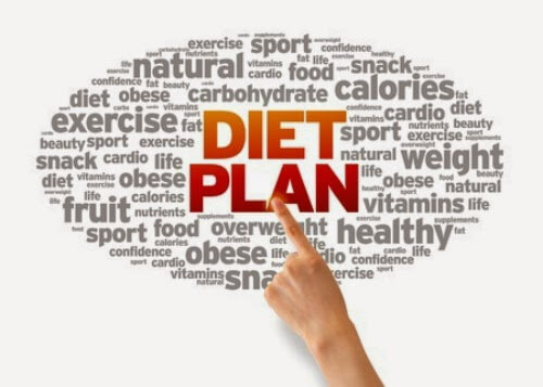 which-diet-plan-with-skinny-fiber-challenge